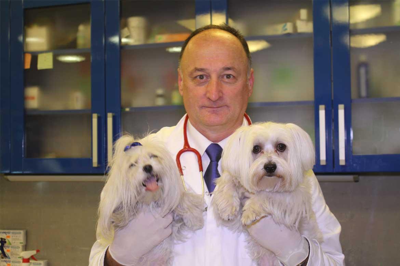 veterinar-beograd